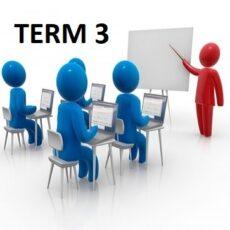 Classes Term 3 (2021)
